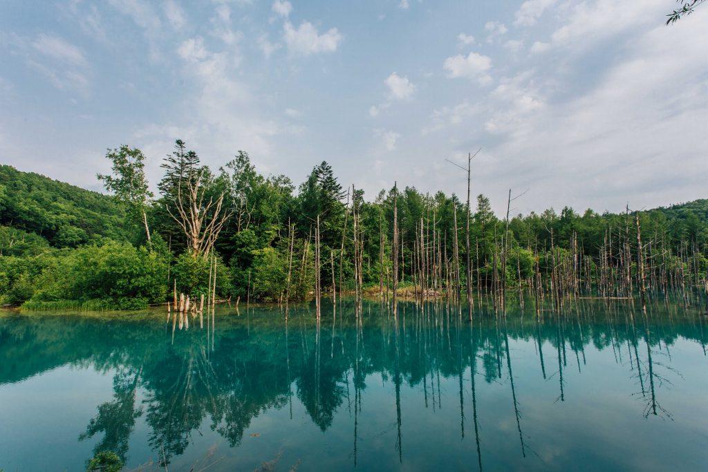 Biei Blue Pond Hokkaido